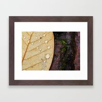 November Rain. Framed Art Print