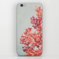 Cheerful Spring iPhone & iPod Skin