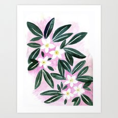 Jasmine Flower Art Print