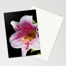 Big Lily Stationery Cards
