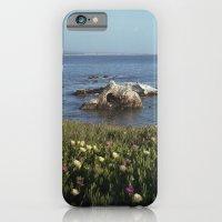 Shell Beach California iPhone 6 Slim Case