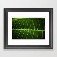 Leafer Framed Art Print
