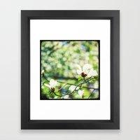 Magnolia En Fleurs Framed Art Print