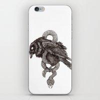 The Hangman's Rope iPhone & iPod Skin