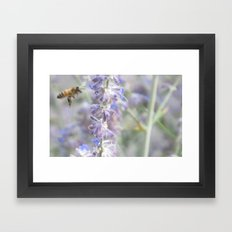 Pollenate Framed Art Print