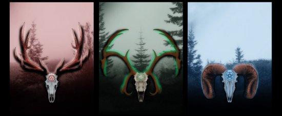 C Horns Canvas Print