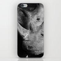 Rhinos iPhone & iPod Skin
