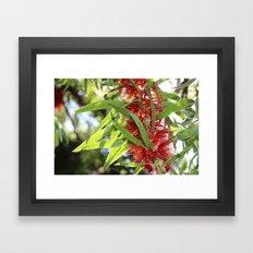 Flower Power 2 Framed Art Print