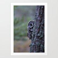 PEERING GREAT GREY OWL Art Print