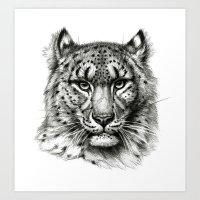 Snow Leopard SK040b schukina Art Print