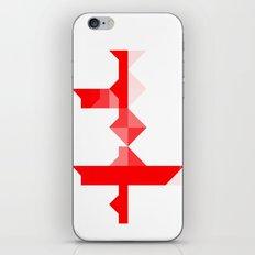 Across iPhone & iPod Skin