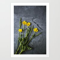 Hello Buttercup - Yellow Flower  Art Print