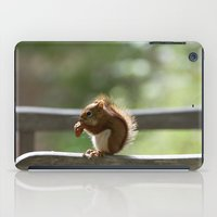 Red Squirrel Snack Time iPad Case