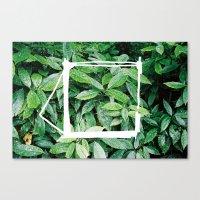 Cathode / Blossom Canvas Print