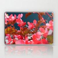 Bay Side Pink Laptop & iPad Skin