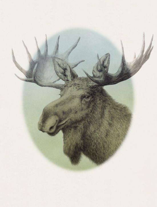 Moose head elk Art Print