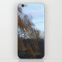 Wind in the Willow iPhone & iPod Skin