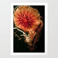 Sea Nettle Art Print