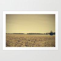 Lonely Field in Brown Art Print