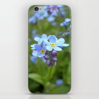 forget-me-not flowers II iPhone & iPod Skin