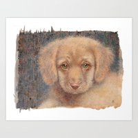 Retriever puppy Art Print