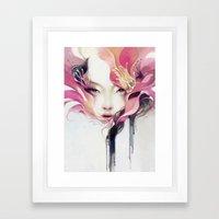Bauhinia Framed Art Print