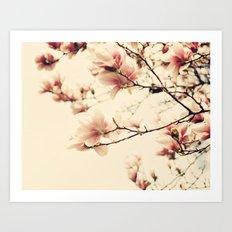 Magnolia Days Art Print
