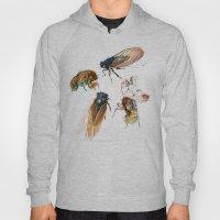 Summer Cicadas Hoody