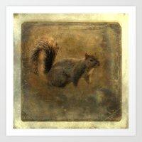 Vintage Squirrel Art Print