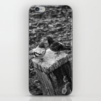 Bill & Coo iPhone & iPod Skin