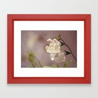 White flower and texture Framed Art Print