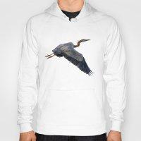 Great blue heron in fly Hoody