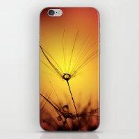 Wistful iPhone & iPod Skin