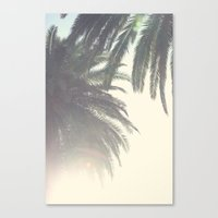 Sunset Palm Tree Canvas Print