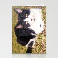 BatCat Stationery Cards