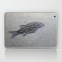 Semionotus Laptop & iPad Skin