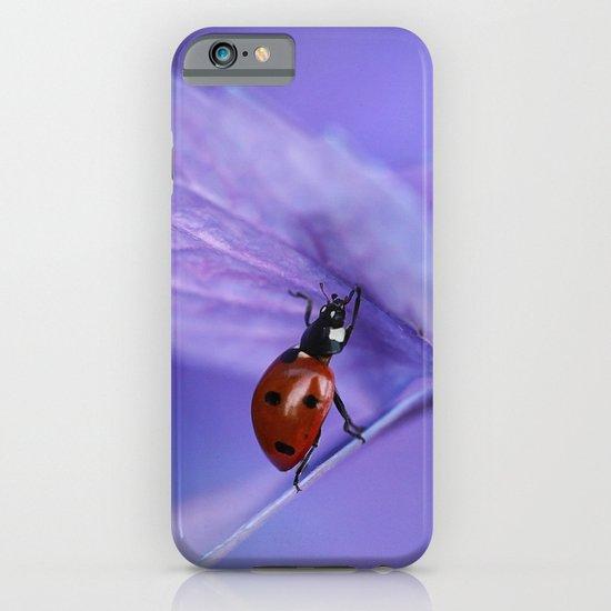 Ladybird on hydrangea iPhone & iPod Case