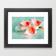 Gladiolus and Stone Framed Art Print