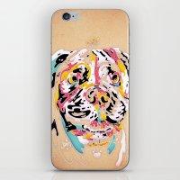 Ai Chan iPhone & iPod Skin