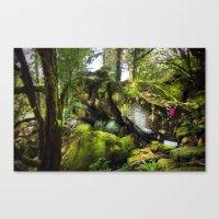 Climbing the Garden Canvas Print