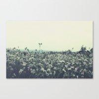 Sicily flowers Canvas Print