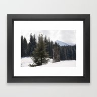 It´s Wintertime Framed Art Print