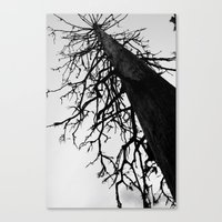 Dead of Winter Canvas Print
