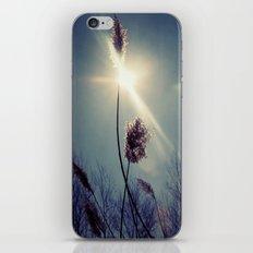 Blue light iPhone & iPod Skin
