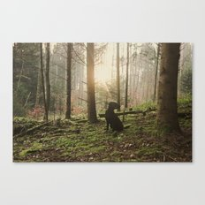 Magic Woods Canvas Print