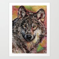 Portrait Of A Gray Wolf Art Print