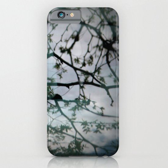 tree mystery iPhone & iPod Case