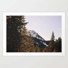 Snow Mountain In The Tre… Art Print