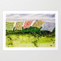 Quilts Along The Bay Art Print