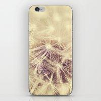 Dandelion Glow iPhone & iPod Skin